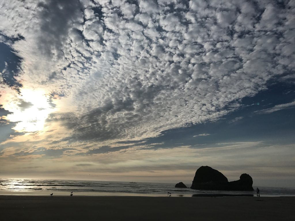 The North Beach on the Washington Coast, Copalis Rock with wild cloud formation